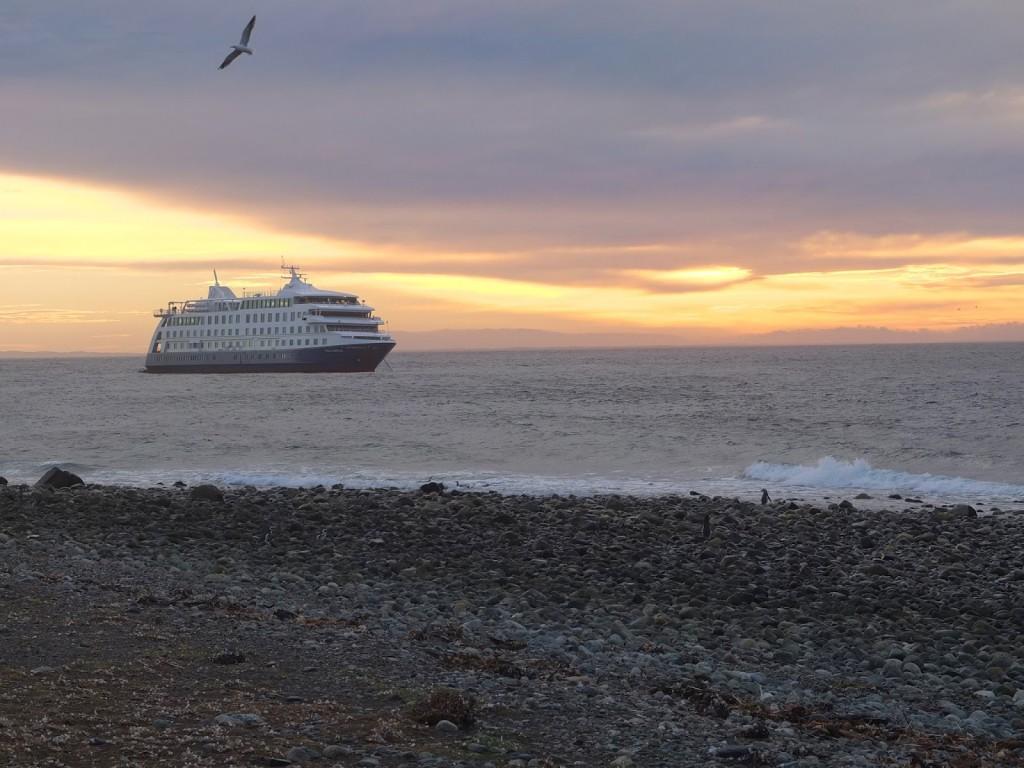 iain cruise 5