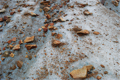 14 -Wow- said Adrian -this surface is normally crispy like cornflakes but today it is slippery from the rain- we tip toed forwards on small rocks burried into the ice.