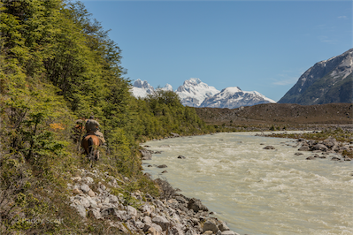 Paddy Scott-Patagonia 15-62-5G3A5355