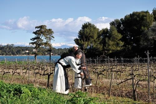 The history of Patagonian wine